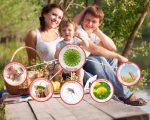 Аллергический ларингит у детей и взрослых