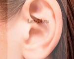 Фурункул в ухе – как формируется, клинические проявления, медикаментозное и хирургическое лечение